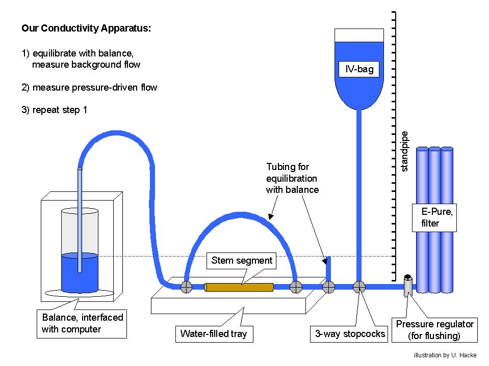Water Conductivity Measurement : Sperry lab methods